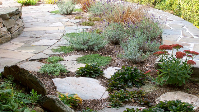 Take A Walk Around This Backyard Project